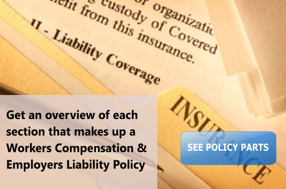 Workers Compensation and Employers Liability Policy